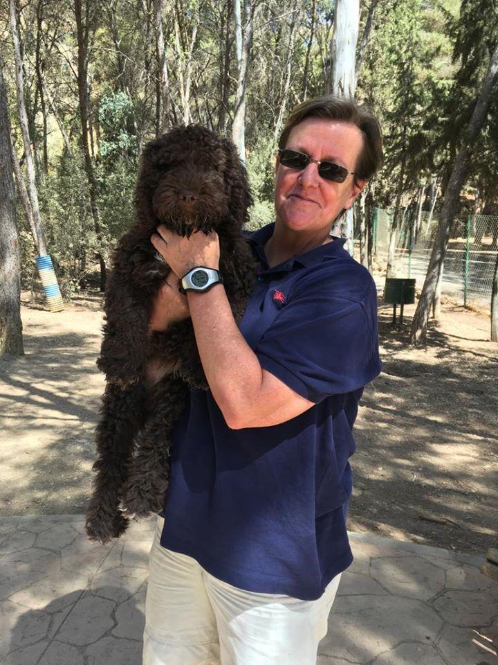Cursos para cachorros