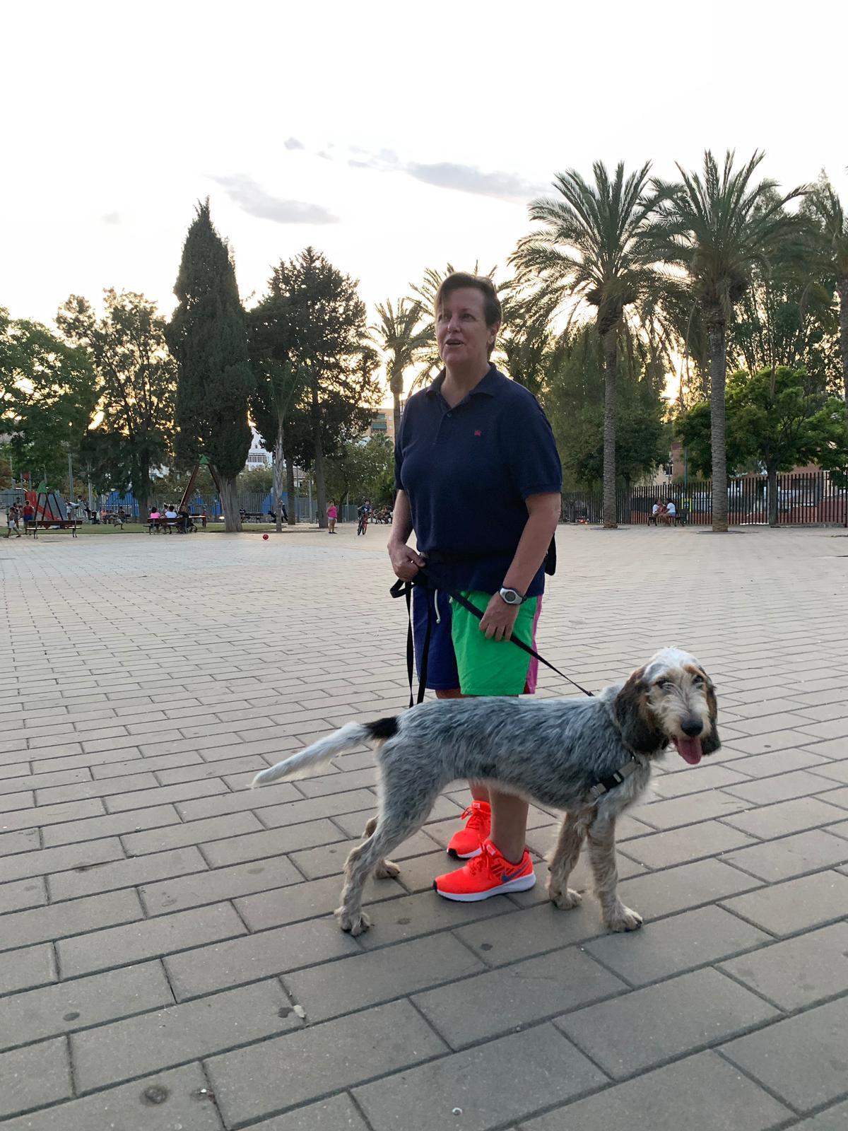 Adiestramiento Obediencia en Perros