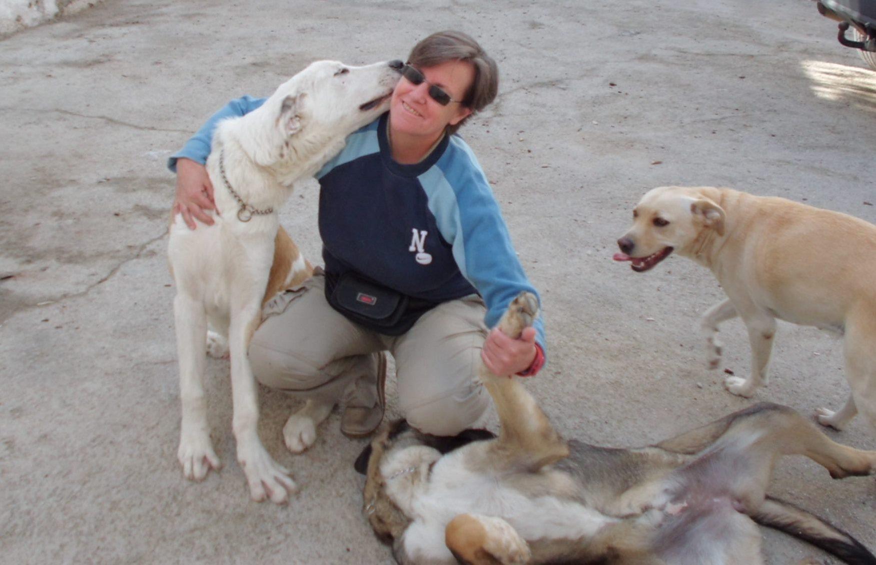 Adiestramiento y Educación Canina